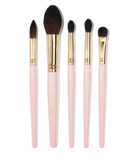 LIGHT PINK 5 PCS BRUSH SET - KIT 5 Pinceaux Rose Claire JUVIA'S PLACE